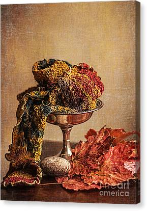 Still Life With Scarf Canvas Print