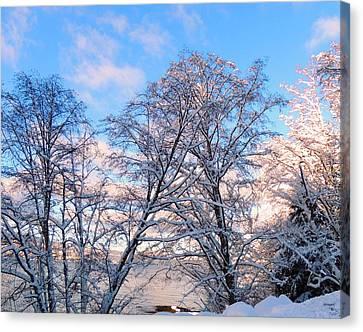 Still Of Winter Canvas Print by Karen Horn