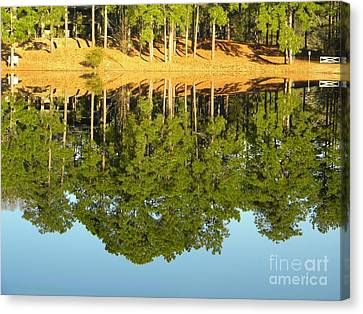 Still Reflections Canvas Print