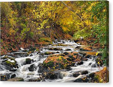 Still River Rapids Canvas Print
