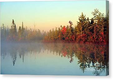 Still Water Marsh Canvas Print by Terri Gostola