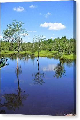 Canvas Print featuring the photograph Still Waters by Jim Whalen