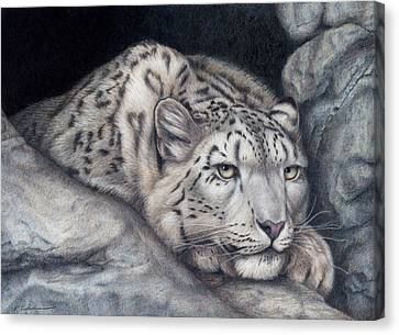 Snow Leopards Canvas Print - Stillnes Like A Stone by Pat Erickson