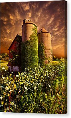 Love Laces Canvas Print - Stillness Of Dawn by Phil Koch