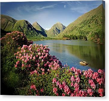 Stillness Of The Mountain Canvas Print by Edmund Nagele
