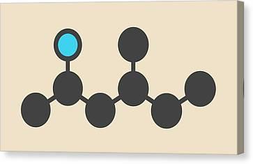 Stimulant Drug Molecule Canvas Print by Molekuul