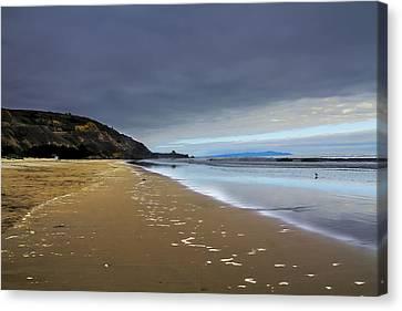 Stinson Beach  California  Canvas Print by Frank Molina
