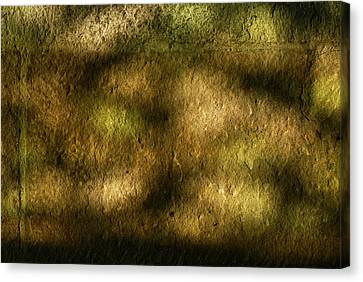 Stone And Light 02 Canvas Print