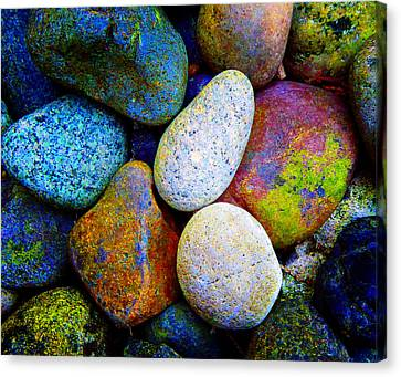 Stone And Light 9 Canvas Print by Laurie Tsemak