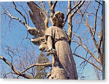 Stone Angel Canvas Print