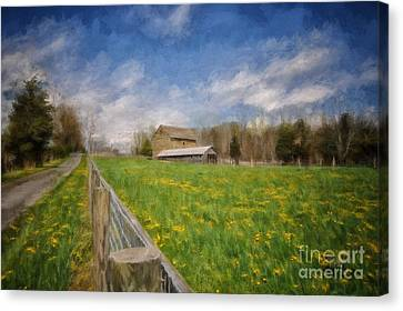 Painterly Canvas Print - Stone Barn On A Spring Morning by Lois Bryan