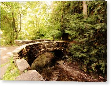 Stone Bridge  Canvas Print by Trina  Ansel