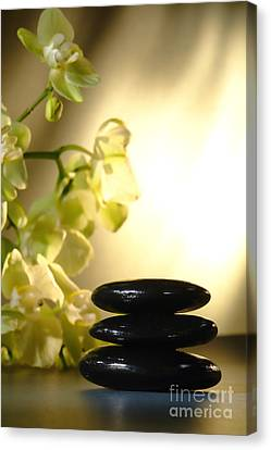 Shiny Canvas Print - Stone Cairn And Orchids by Olivier Le Queinec