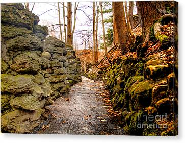 Stone Cold Walkway Canvas Print by Jim Lepard