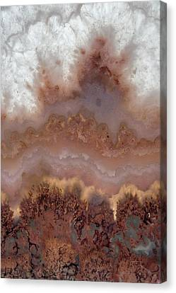 Stone Designs Canvas Print by Leland D Howard