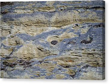 Canvas Print featuring the photograph Stone Detail by Felicia Tica