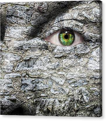 Gorgon Canvas Print - Stone Face by Semmick Photo