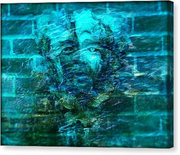 Stone Face Under The Water Canvas Print by Lilia D
