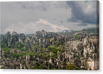 Stone Forest 2 Canvas Print