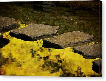 Stone Path Canvas Print by Maria Angelica Maira