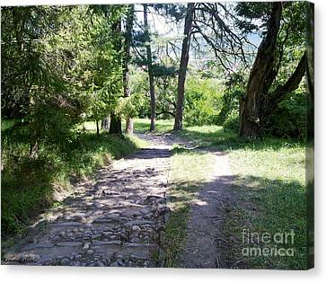 Canvas Print featuring the photograph Stone Path by Ramona Matei