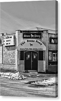 Stone Pony In Black And White Canvas Print