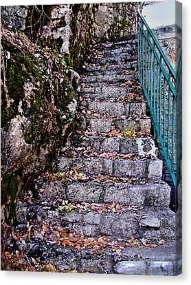 Stone Stairway Canvas Print by Jane Schnetlage