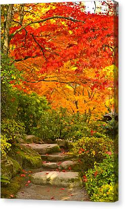 Stone Steps In A Forest In Autumn Canvas Print by Panoramic Images