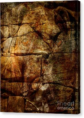 Stone Wall Canvas Print by Judy Wood