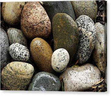 Canvas Print featuring the photograph Stones by Carol Sweetwood