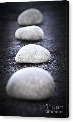 Stones Canvas Print by Elena Elisseeva