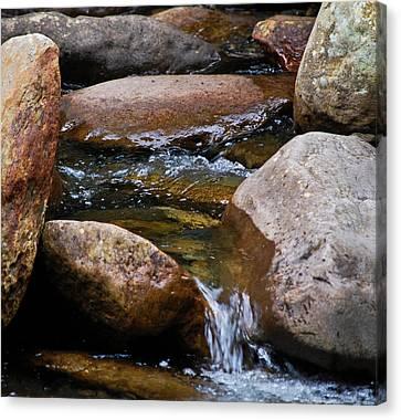 Stones Flow Canvas Print by Christi Kraft