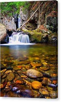 Stones In The Stream Canvas Print by Jeff Sinon