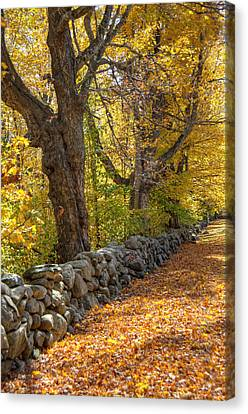 Stonewall In Autumn Canvas Print by Donna Doherty