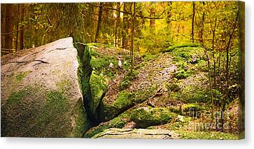 Stony Woods Panoramic Canvas Print by Lutz Baar
