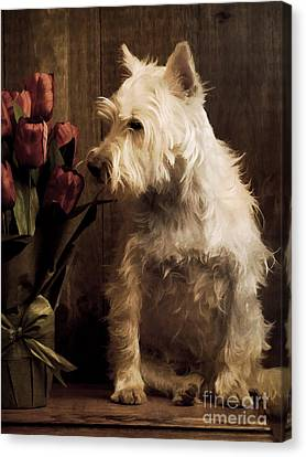 Stop And Smell The Flowers Canvas Print by Edward Fielding