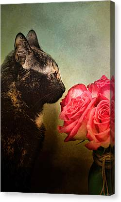 Stop And Smell The Flowers Canvas Print by Jai Johnson