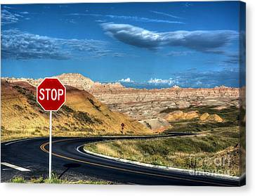 Stop At The Badlands Canvas Print by Mel Steinhauer
