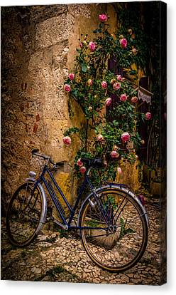 Stopping By Canvas Print by Celso Bressan