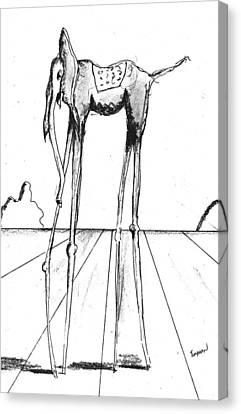 Stork Legs Canvas Print by Dan Twyman