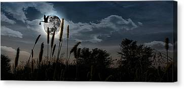 Stork With A Baby Flying Over Moon Canvas Print