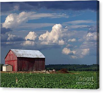 Canvas Print featuring the photograph Storm Above by Gena Weiser