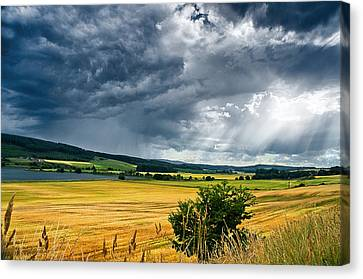 Storm And Sunbeams Canvas Print by Jacqi Elmslie