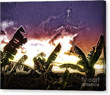 Storm Brewing Canvas Print by The Art of Alice Terrill