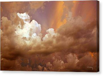 Storm Clouds Canvas Print by Andrea Kelley