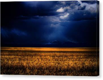 Storm Clouds Over The Timberline Canvas Print by Joshua Dwyer