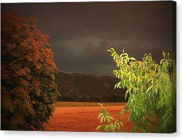 Storm Coming Canvas Print by Flow Fitzgerald