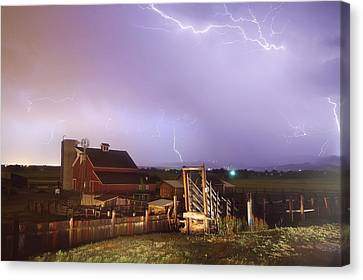 Cattle Run Canvas Print - Storm On The Farm by James BO  Insogna