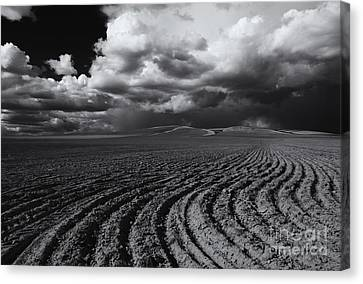 Storm Path Canvas Print by Mike  Dawson