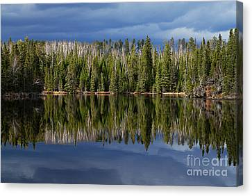 Storm Reflections Canvas Print by Larry Ricker